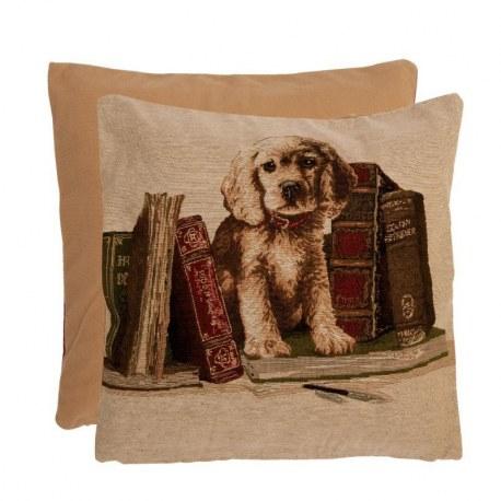 Cuscino con cane e libri