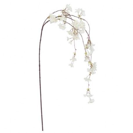 Ramo di ciliegio con fiori