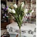 Mazzo di tulipani bianchi
