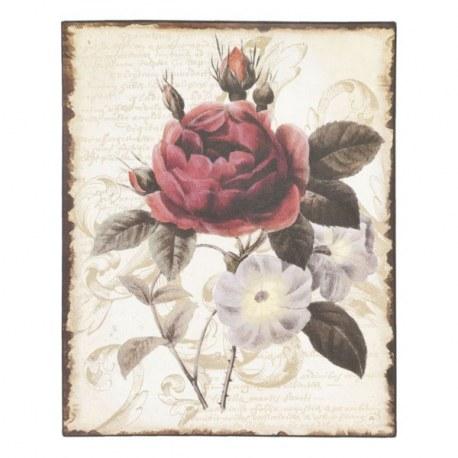 Pittura Rosa